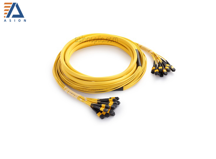 MPO/MTP Trunk Cable