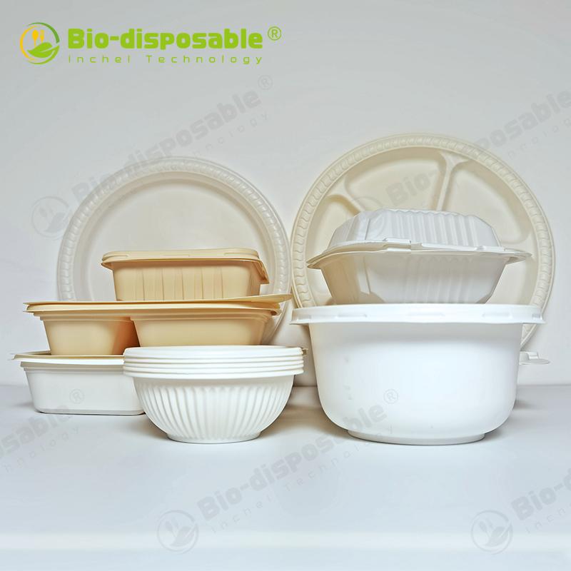 Sugarcane/Bagasse Pulp Food Container Wholesale