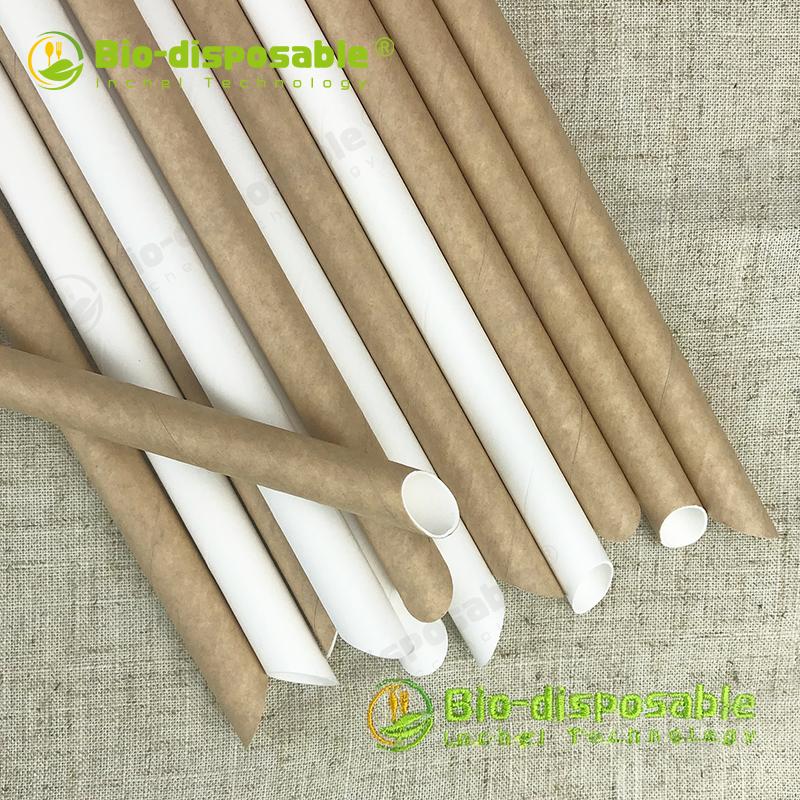 Paper Straw - Diagonal Cut