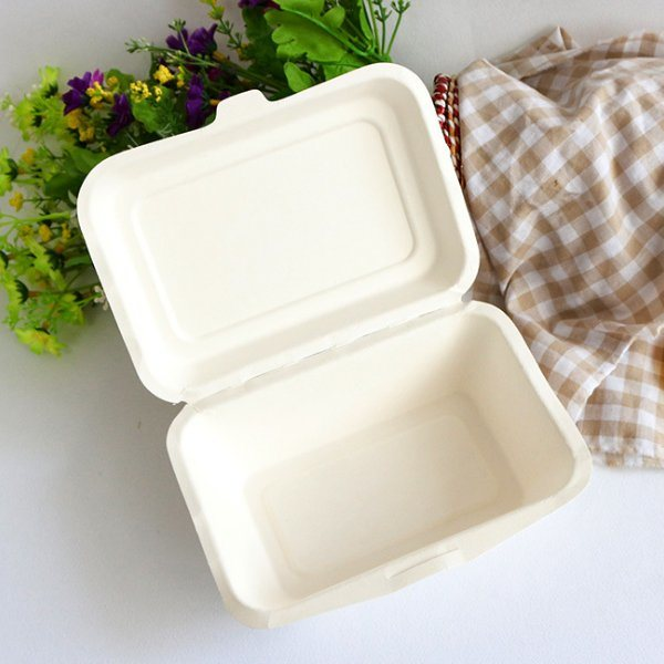 Disposable Pulp Food Container wholesale