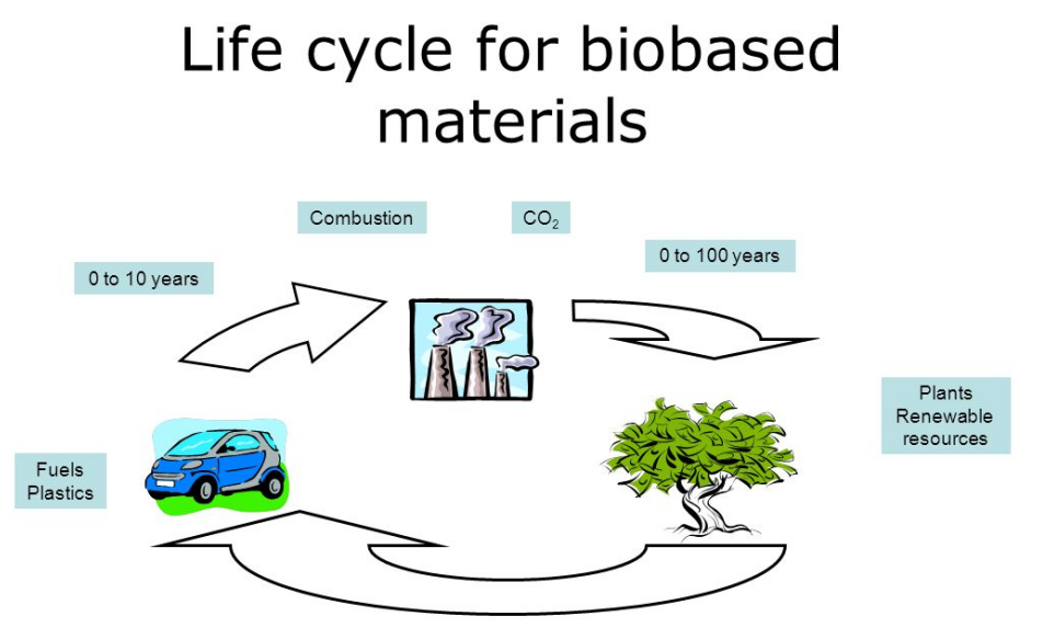 Life cycle for biobased materials