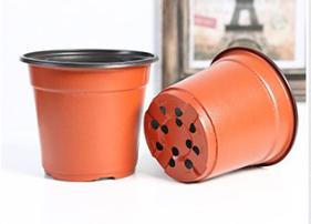flower pot 4 .jpg