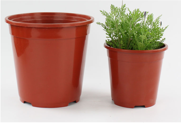 flower pot 6 .png