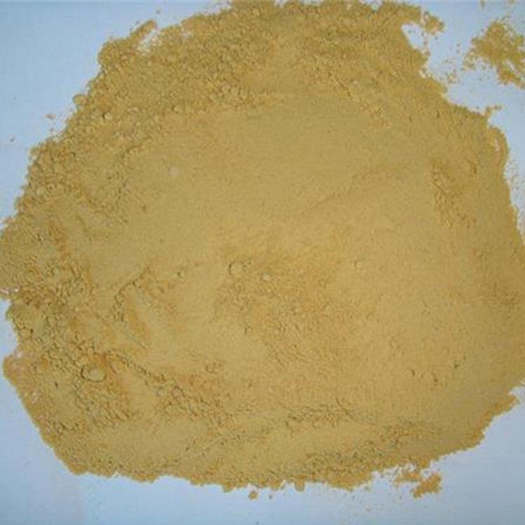 ginger-powder1.jpg