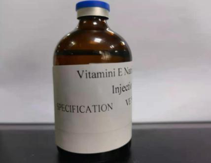 Vitamini B1 Injection supplier