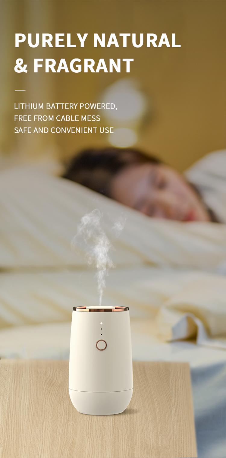 mini oil diffuser.jpg