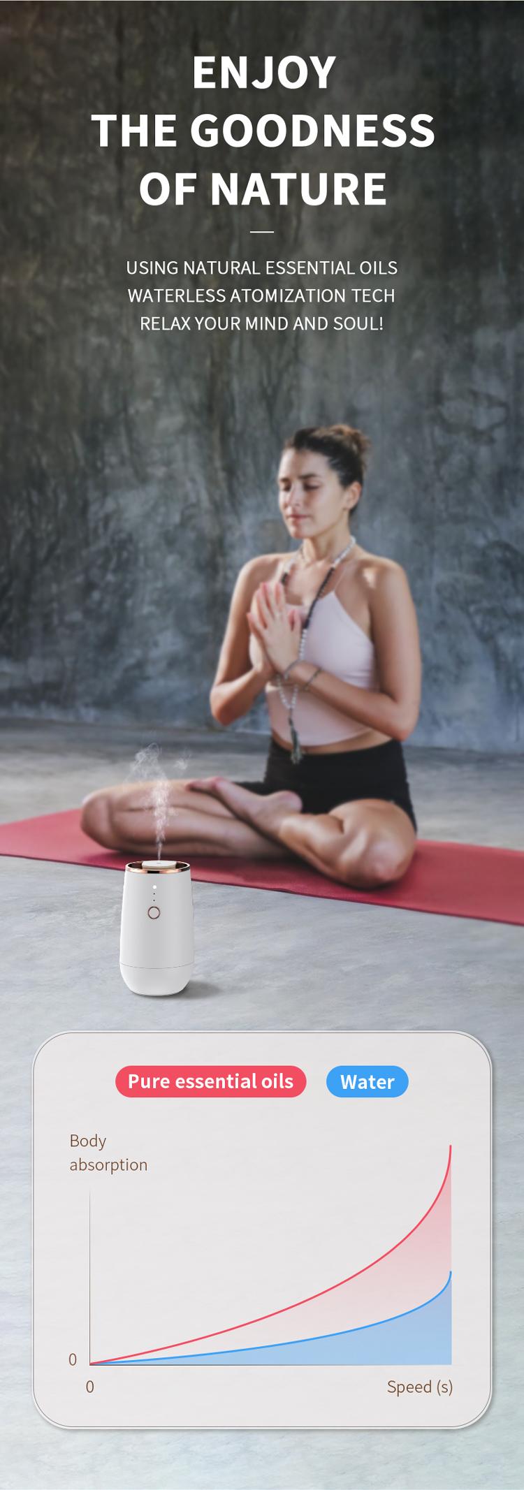 luxury diffuser aromatherapy.jpg