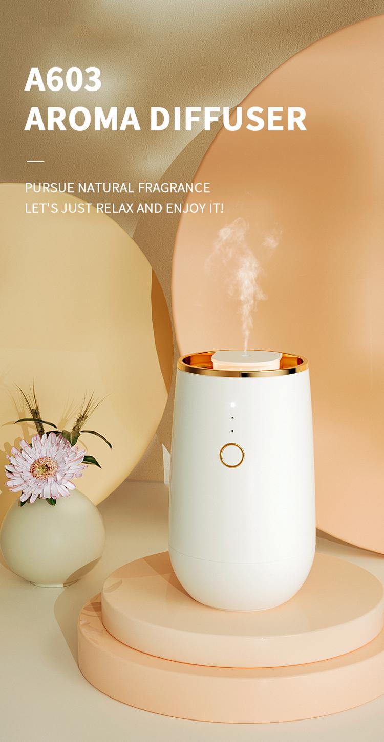 luxury air diffuser.jpg